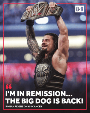 👏: B R  IM IN REMISSION...  THE BIG DOG IS BACK!  ROMAN REIGNS ON HIS CANCER 👏