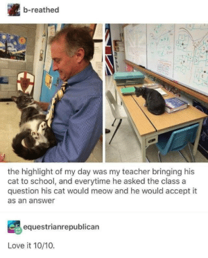 highlight: b-reathed  2eN72  the highlight of my day was my teacher bringing his  cat to school, and everytime he asked the class a  question his cat would meow and he would accept it  as an answer  equestrianrepublican  Love it 10/10.