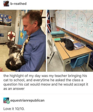 Accept It: b-reathed  e.  the highlight of my day was my teacher bringing his  cat to school, and everytime he asked the class a  question his cat would meow and he would accept it  as an answer  equestrianrepublican  Love it 10/10.