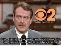 Chicago, Scooby Doo, and Dog: B3M TV/CHICAGO  t the Scooby Doo universe could have a talking dog  why couldn't it have real ghosts? Tonight at 10 Hard Journalism