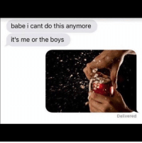 Meme, Game, and Dank Memes: babe i cant do this anymore  it's me or the boys  Delivered I been out the meme game for a while. Who's easy to offend ?