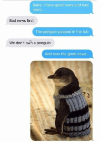 Bad, News, and The Penguin: Babe, I have good news and bad  news.  Bad news first  The penguin pooped in the tub  We don't own a penguin  And now the good news...