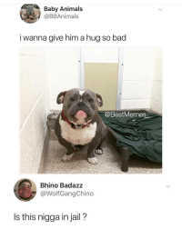 Animals, Bad, and Jail: Baby Animals  @BBAnimals  i wanna aive him a hug so bad  @BestMemes  Bhino Badazz  @WolfGangChino  Is this nigga in jail? I know I say this a lot, but @BestMemes actually has the best memes 👌