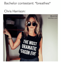 Since your application wasn't accepted for this season of the bachelor (again), fall in love with our new collection instead. We dgaf if you're here for the right reasons or not. Link in bio. shopbetches @shopbetches: Bachelor contestant: *breathes*  Chris Harrison:  @betches  betches.com  THE MOST  ORAMATIC  SASON EVE Since your application wasn't accepted for this season of the bachelor (again), fall in love with our new collection instead. We dgaf if you're here for the right reasons or not. Link in bio. shopbetches @shopbetches