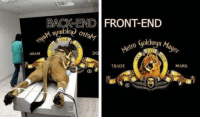 Front vs backend: BACK END FRONT-END  nuublo  1AS  rO Goldwyn a  TRADE  MARK Front vs backend