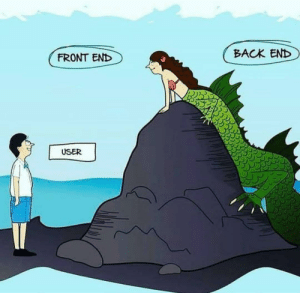 Facing the reality!!: BACK END  FRONT END  USER Facing the reality!!