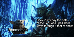 Jedi, Work, and House: Back in my day the path  of the Jedi was uphill both  ways through 5 feet of snow  Boomer, ok Work hard to buy a house, you must