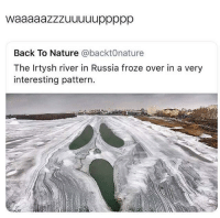 Blackpeopletwitter, Nature, and Russia: Back To Nature @@backt0nature  The Irtysh river in Russia froze over in a very  interesting pattern. <p>Waaaaazzuuuuup (via /r/BlackPeopleTwitter)</p>