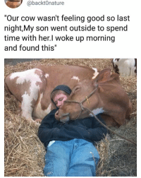 "Memes, Good, and Time: @backt0nature  ""Our cow wasn't feeling good so last  night,My son went outside to spend  time with her.l woke up morning  and found this"" She's a keeper"