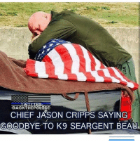 Friends, Memes, and Respect: BACKTHEPOLICE  CHIEF JASON CRIPPS SAYING  GOODBYE TO K9 SEARGENT BEAU Respect - - ❎ DOUBLE TAP pic 🚹 TAG your friends 🆘 DM your Pics-Vids 📡 Check My IG Stories 💥Check the link in Bio 👉@veterancollection 🔥Follow us @veterancollection - Source @militaryplanet - - 🇺🇸🇺🇸🇺🇸🇺🇸🇺🇸🇺🇸🇺🇸🇺🇸 usarmy armylife usnavyseal navylife militarylife militarylove usmilitaryacademy navylife usmilitary usarmyveteran veterans supportthetroops supportourveterans usnavy USMC USCG usmarines armedforces semperfi usairforcepride usairforce hooah Oorah armystrong infantry activeduty supportourtroops usarmedforces