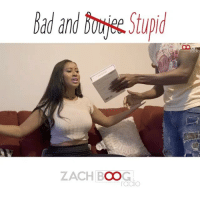Follow @zachboog now! Follow him for more of his parodies 💀😂😂 - - - - - - migos hiphop rap badandboujee: Bad andbmi &Stupid  ZACH BOOG  radIO Follow @zachboog now! Follow him for more of his parodies 💀😂😂 - - - - - - migos hiphop rap badandboujee