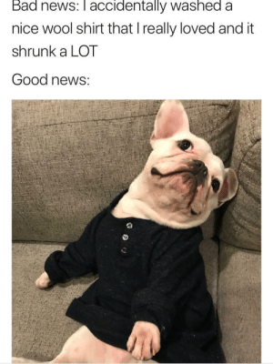 Bad, News, and Good: Bad news: accidentally washed a  nice wool shirt that I really loved and it  shrunk a LOT  Good news: How to turn a negative into a positive! via /r/wholesomememes https://ift.tt/2OM3yZw