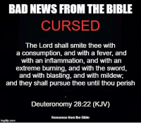 Nonsense from the Bible: BAD NEWS FROM THE BIBLE  CURSED  The Lord shall smite thee with  a consumption, and with a fever, and  with an inflammation, and with an  extreme burning, and with the sword  and with blasting, and with mildew,  and they shall pursue thee until thou perish  Deuteronomy 28:22 (KJV)  Nonsense from he Bible  inngfip.com Nonsense from the Bible