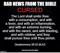 Nonsense from the Bible: BAD NEWS FROM THE BIBLE  CURSED  The Lord shall smite thee  with a consumption, and with  a fever, and with an inflammation,  and with an extreme burning,  and with the sword, and with blasting,  and with mildew, and they  shall pursue thee until thou perish-  Deuteronomy 28:22 (KJV)  Nonsense from he Bible  inngfip.com Nonsense from the Bible