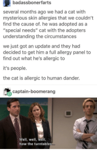 """Understanding, How, and Got: badassbonerfarts  several months ago we had a cat with  mysterious skin allergies that we couldn't  find the cause of. he was adopted as a  """"special needs"""" cat with the adopters  understanding the circumstances  we just got an update and they had  decided to get him a full allergy panel to  find out what he's allergic to  it's people.  the cat is allergic to human dander.  captain-boomerang  Well, well, well,  how the turntables"""