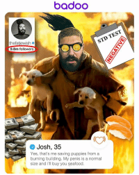 I just joined @badoo, here's how you make a dating profile that will get you results. Rescuing puppies! Sushi! No STD's!: badOO  TEST  STD thefatiewish  9.8m followers  Josh, 35  Yes, that's me saving puppies from a  burning building. My penis is a normal  size and ill buy you seafood. I just joined @badoo, here's how you make a dating profile that will get you results. Rescuing puppies! Sushi! No STD's!