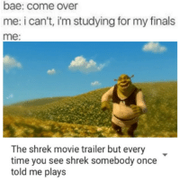me irl: bae: come over  me: i can't, im studying for my finals  me  The shrek movie trailer but every  time you see shrek somebody once  told me plays me irl