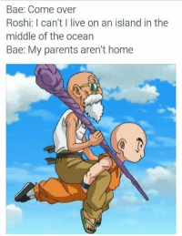 Bae, Come Over, and Memes: Bae: Come Over  Roshi: I can't I live on an island in the  middle of the ocean  Bae: My parents aren't home Roshi is my Spirit Animal...