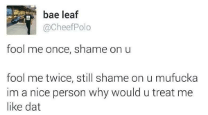 Bae, Dank, and Memes: bae leaf  @CheefPolo  fool me once, shame on u  fool me twice, still shame on u mufucka  im a nice person why would u treat me  like dat No shame on me by redditneonate MORE MEMES
