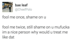 Bae, Nice, and Once: bae leaf  @CheefPolo  fool me once, shame on u  fool me twice, still shame on u mufucka  im a nice person why would u treat me  like dat