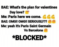 😂😂😂⚽: BAE: What's the plan for valentines  Day love?  Me: Paris here we come. CCC  Me: yeah it's Paris Saint Germain  Vs Barcelona  *BLOCKED* 😂😂😂⚽
