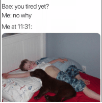 Bae, Funny, and Lol: Bae: you tired yet?  Me: no why  Me at 11:31: Tag bae lol
