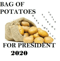 BAG OF  POTATOES  FOR PRESIDENT  2020