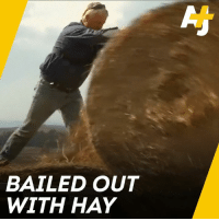 Memes, Muslim, and Australian: BAILED OUT  WITH HAY This is how these Muslim aid workers are helping out Australian farmers during the severe drought.