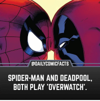 Memes, Spider, and SpiderMan: @bAILYCOMICFACTS  SPIDER-MAN AND DEADPOOL,  BOTH PLAY 'OVERWATCH Looks like the play with each other... • marvel marvelcomics comics marvelheroes marvelvillains hero heroes villains villain avengers avengersassemble marvelstudios marvelmovies marvelfacts marvelcomicfacts dailyfacts comicfacts comic mcu dailycomicfacts overwatch