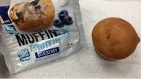 <p>Expectations VS Reality - There were two blueberries in this muffin.</p>: BAKE  TM  PROTEIN  UEBERRY  NET W <p>Expectations VS Reality - There were two blueberries in this muffin.</p>