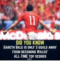 Memes, 🤖, and Warrior: BAL  DNA  DID YOU KNOW  GARETH BALE IS ONLY 3 GOALS AWAY  FROM BECOMING WALES  ALL-TIME TOP SCORER Welsh Warrior ❤