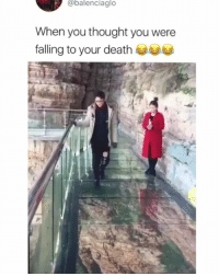 Memes, Death, and Thought: @balenciaglo  When you thought you were  falling to your death His first reaction was to let go of the rail 😂 • Follow @savagememesss for more posts daily
