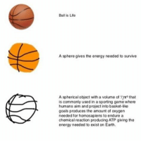 chemical reaction: Ball is Life  A sphere gives the energy needed to survive  A spherical object with a volume of that  is commonly used in a sporting game where  humans aim and project into basket-like  goals produces the amount of  oxygen  needed for homosapiens to endure a  chemical reaction producing ATP giving the  energy needed to exist on Earth.