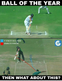 Memes, Steve Smith, and Bowling: BALL OF THE YEAR  IF BOWLER HAD A BRAN  BRAINLESS BOWLING  THEN WHAT ABOUT THIS? Remember this ball from Wahab Riaz to Steve Smith?  (Disclaimer - Memes are for laugh, not to disrespect teams/players)