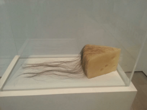 "bambi–eyed:  robcoindustries:  this is art. this is a work. of contemporary art. being exhibited at the los angeles museum of contemporary art. the title is ""long haired cheese"". this is art. i couldn't make this shit up if i tried.  and this is the world I am a part of. Blessed, this is on the level of hipsters writing on paint swatches. : bambi–eyed:  robcoindustries:  this is art. this is a work. of contemporary art. being exhibited at the los angeles museum of contemporary art. the title is ""long haired cheese"". this is art. i couldn't make this shit up if i tried.  and this is the world I am a part of. Blessed, this is on the level of hipsters writing on paint swatches."