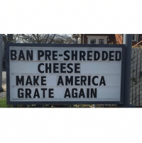 America, Memes, and Puns: BAN PRE-SHREDDED  CHEESE  MAKE AMERICA  GRATE AGAIN THAT WAS SO CHEESY 😂🧀, follow me @punlifestyle for more puns 💕
