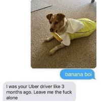 Being Alone, Uber, and Banana: banana boi  I was your Uber driver like 3  months ago. Leave me the fuck  alone