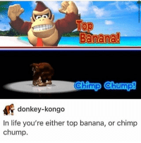 Donkey, Life, and Memes: Banana!  DIO  Ch  im  Ch  donkey-kongo  In life you're either top banana, or chimp  chump. This is the hard truth that republicans don't want to face