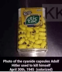 Banana, History, and Hitler: BANANA  tic  tac  Photo of the cyanide capsules Adolf  Hitler used to kill himself  April 30th, 1945 (colorized) <p>An important part of history</p>