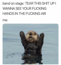 Fucking, Funny, and Lol: band on stage: TEAR THIS SHIT UP  WANNA SEE YOUR FUCKING  HANDS IN THE FUCKING AIR  me: Lol 😂