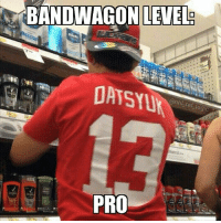 BANDWAGON LEVEL  DAYS  PRO Go Detroit Blackwinghawks I guess..? - Tag a bandwagoner! ;)