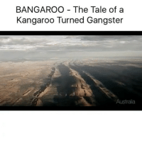 Funny, Australia, and Tales Of: BANGAROO The Tale of a  Kangaroo Turned Gangster  Australia I'm in tears 😂😂😂😂 (@chrisashley_)
