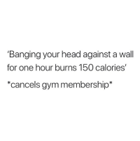 Gym, Head, and Memes: 'Banging your head against a wall  for one hour burns 150 calories'  *cancels gym membership* 😂😂😂