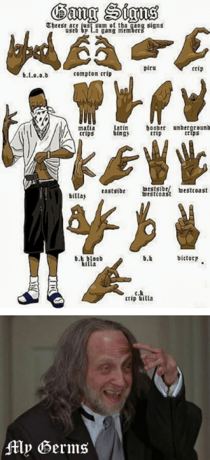 BangSigns Theest Are Just Sum of Tha Gang Signs Ustd Bp La