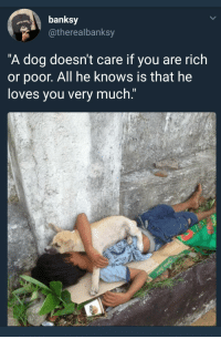 """<p>Wholesome banksy via /r/wholesomememes <a href=""""http://ift.tt/2qjeXU7"""">http://ift.tt/2qjeXU7</a></p>: banksy  otherealbanksy  """"A dog doesn't care if you are rich  or poor. All he knows is that he  loves vou very much."""" <p>Wholesome banksy via /r/wholesomememes <a href=""""http://ift.tt/2qjeXU7"""">http://ift.tt/2qjeXU7</a></p>"""