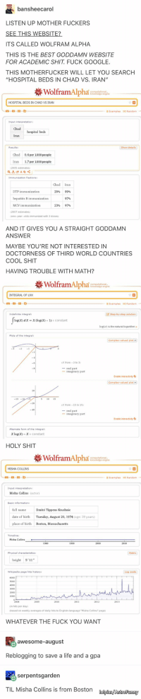 how to write natural log in wolfram alpha