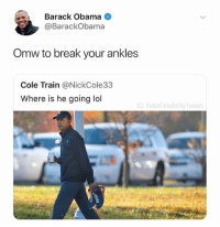 Mood: Barack Obama  @BarackObama  Omw to break your ankles  Cole Train @NickCole33  Where is he going ldl  G: FakeCelebrityTweet Mood