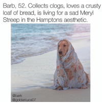 Memes, Aesthetic, and Meryl Streep: Barb, 52. Collects clogs, loves a crusty  loaf of bread, is living for a sad Meryl  Streep in the Hamptons aesthetic.  @bark  @goldenlucaO7 She would never own an appliance that wasn't stainless steel. via @goldenluca07