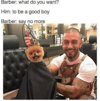 Barber, Memes, and Say No More: Barber: What do you want?  Him: to be a good boy  Barber: say no more  Sweetkaratermoves