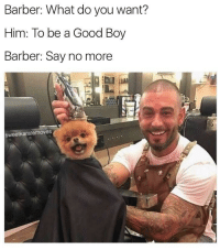 """<p>11/10 Good Boy via /r/wholesomememes <a href=""""http://ift.tt/2mkU30M"""">http://ift.tt/2mkU30M</a></p>: Barber: What do you want?  Him: To be a Good Boy  Barber: Say no more  sweetkaratemoves <p>11/10 Good Boy via /r/wholesomememes <a href=""""http://ift.tt/2mkU30M"""">http://ift.tt/2mkU30M</a></p>"""
